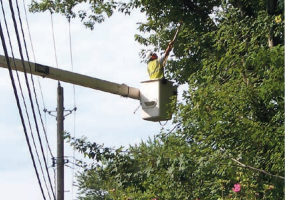 Power company worker in cherry picker bucket trimming trees near power lines