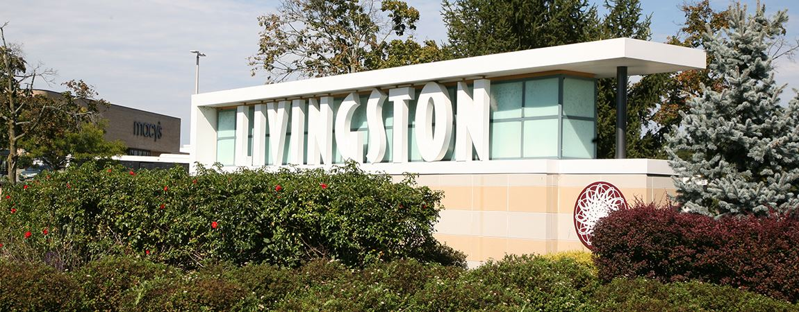Large Livingston sign surrounded by trees and shrubbery
