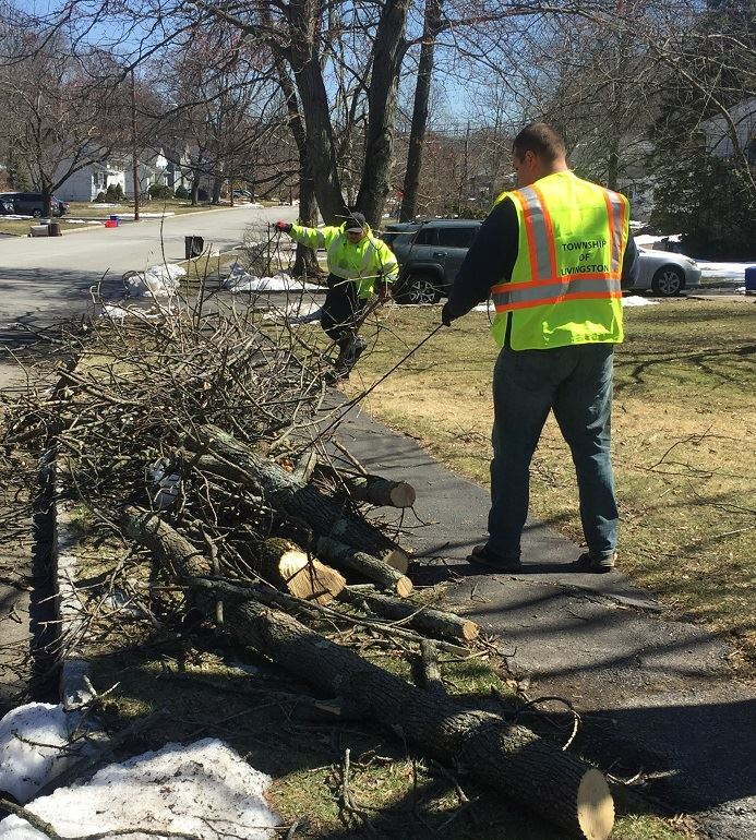 Livingston&#39s DPW clearing branches brought down by storm