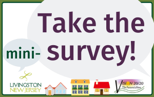"""Take the mini-survey"" in purple text on gray speech bubbles, Livingston & Vision 20/20 logos,"