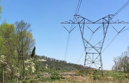 Electric transmission lines on metal towers, with trees cleared to a distance. From nj.pseg.com